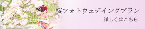 バナー【さくら】.jpg