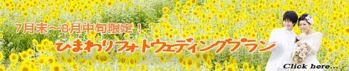 summer flower.jpg