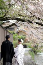 [和装ロケーションプラン]静岡から京都へ桜フォトウェディング