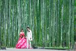 [洋装ロケーションプラン]ウエディングドレスとカラードレスで前撮り