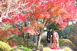[和装ロケーション]紅葉のベストシーズンの結婚前撮り