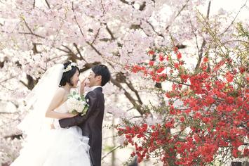 [洋装ロケーション]春のお花に囲まれてのフォトウエディング
