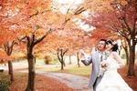 紅葉の中で洋装ロケーション撮影