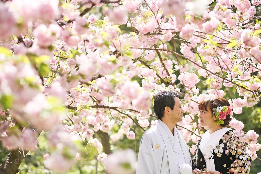 八重桜と新緑が綺麗な京都でブライダルフォト