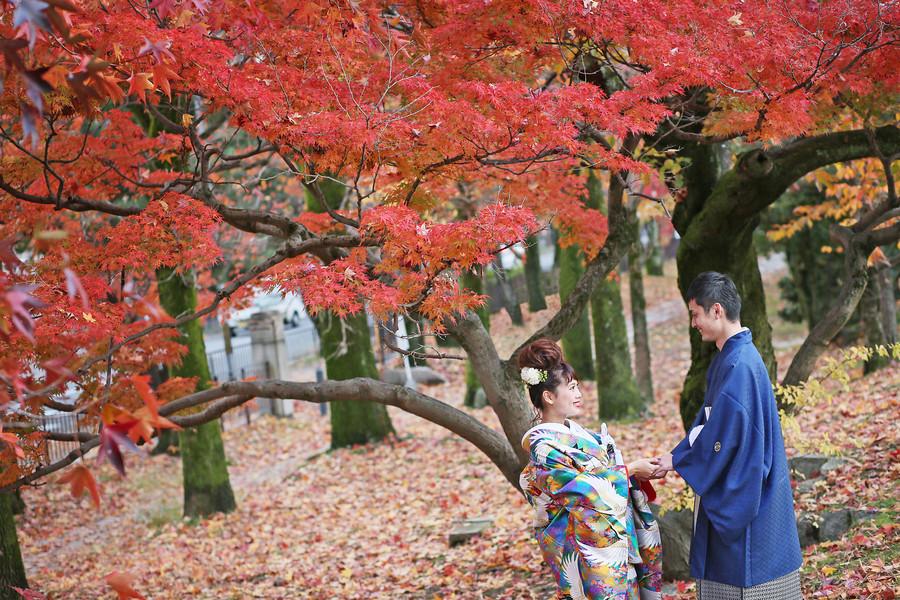 京都岡崎公園の紅葉