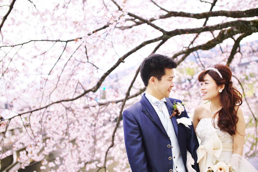 京都鴨川で桜フォトウェディング