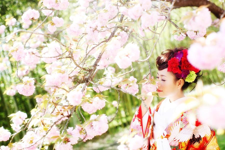 京都の桜フォトウェディング
