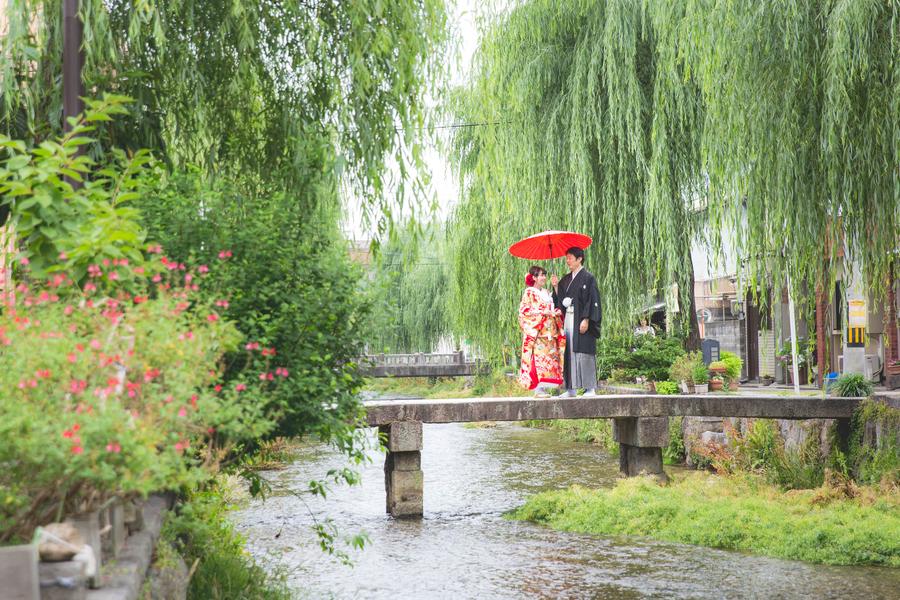 新緑シーズンの東山白川