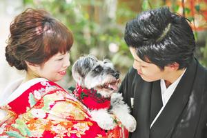 愛犬と一緒に京都和装撮影