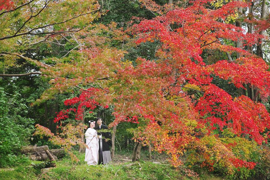 京都紅葉の前撮り