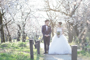 桜シーズンの洋装ロケ