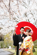 【春のご予約受付中】京都で桜前撮り