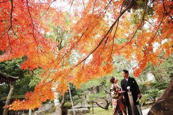 京都で紅葉シーズンの前撮り!ご予約はお早目に!