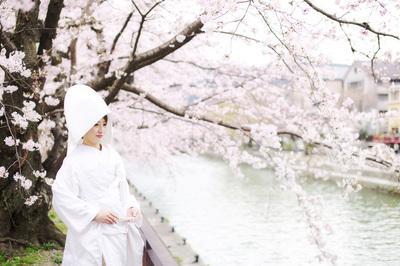 [残りわずか]桜フォトウェディングプラン