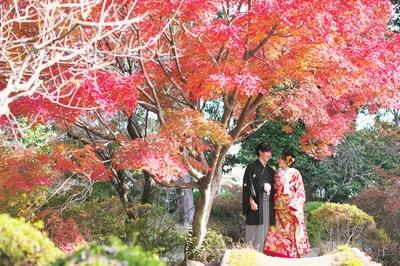 [人気]紅葉シーズンの結婚前撮りのご予約はお早めに