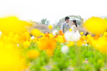 [人気]春の植物園前撮りプラン