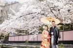 [人気]2021年桜シーズンの前撮り予約受付スタート