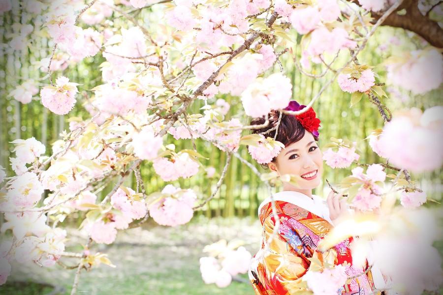 京都で桜フォトウェディング